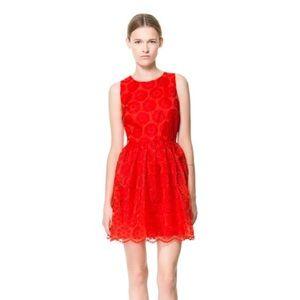 Zara Red Lace Fantasy  Skater Dress ❤️ size small
